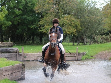 Riding in the New Forest